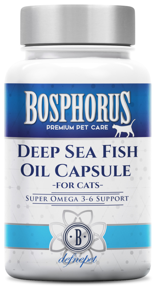 DEEP SEA FISH OIL CAPSULE FOR CATS fotograf