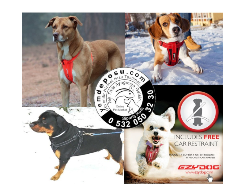 EZYDOG CHEST PLATE LARGE RED