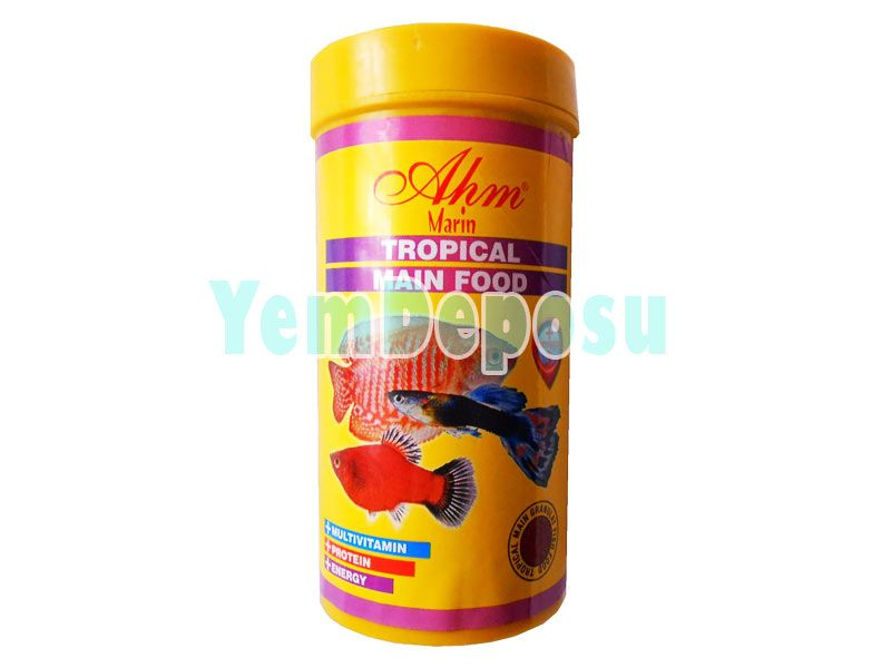 AHM TROPİCAL MAIN FOOD 250 ML KUTU fotograf